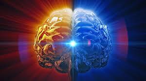 The brain is a creative genius